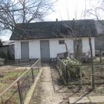 IMG_2007